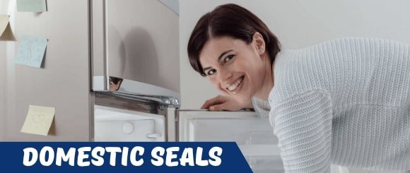 Domestic Fridge Seal